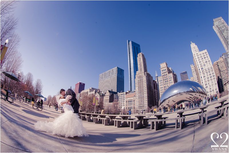 150-2swansphotography-chicagowinter3